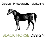 Black Horse Design (Nottinghamshire Horse)