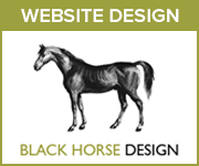Black Horse Design Website Design (Nottinghmashire Horse)