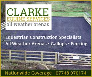 Clarke Equine Services  2019 (Nottinghamshire Horse)