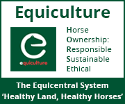Equiculture 01 (Nottinghamshire Horse)