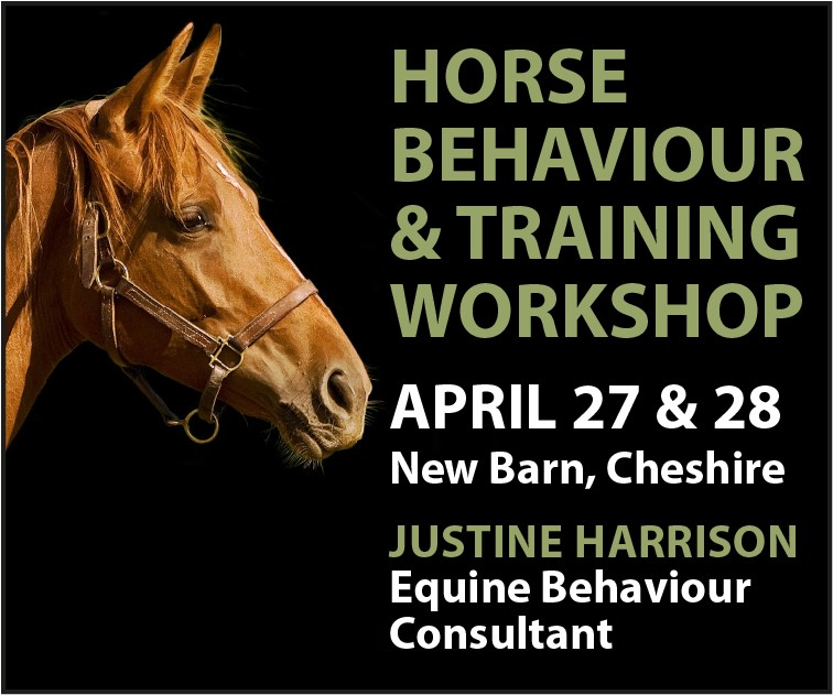 Justine Harrison Workshop April 2019 (Nottinghamshire  Horse)